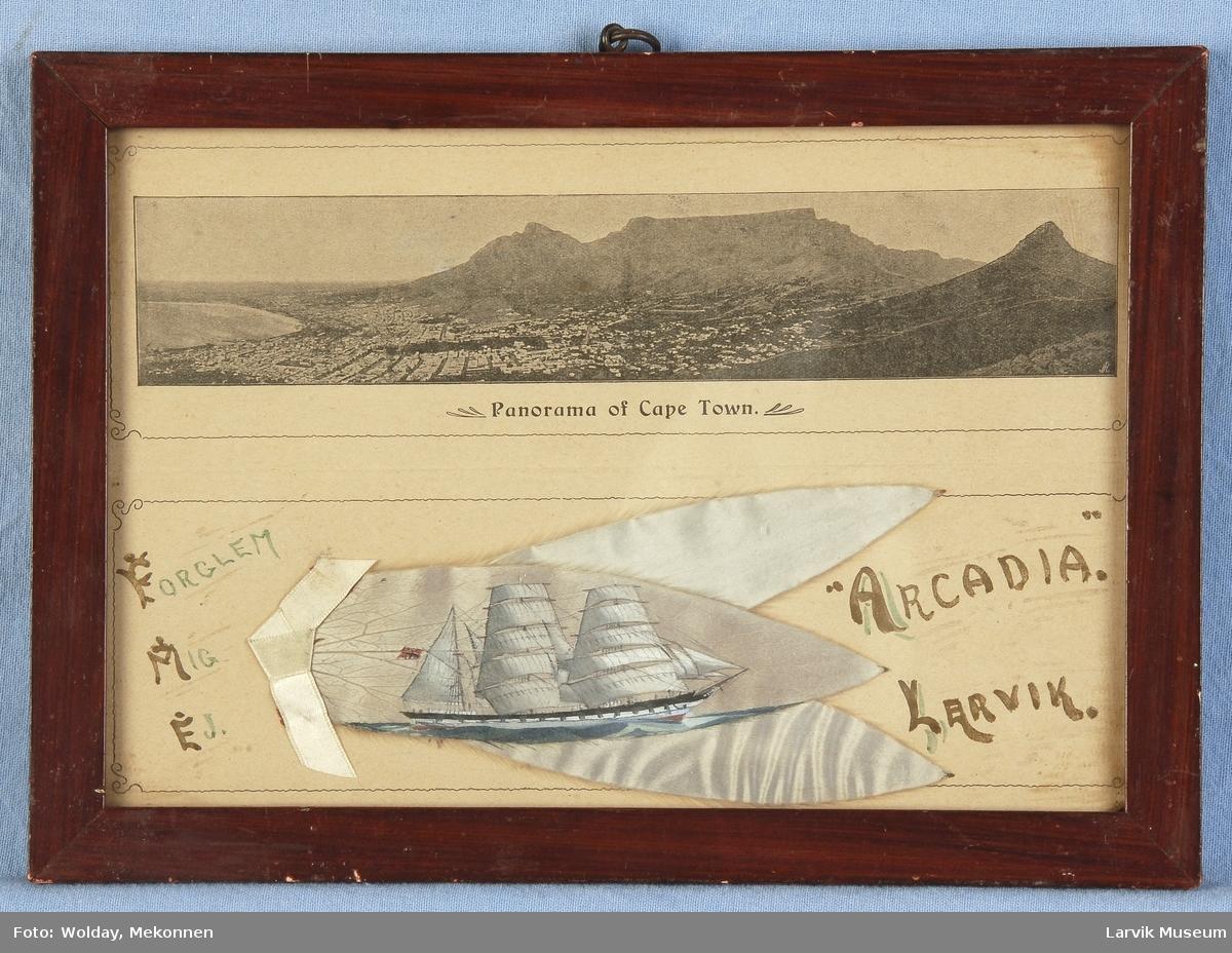 Arcadia av Larvik malt på et sølvblad, også kalt Kapp-blad eller silverleaf. Tre slike blader samlet, med panorama over Cape Town over. Bilde i glass og ramme.