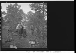 Tre speidere utenfor et telt. Furuskog.