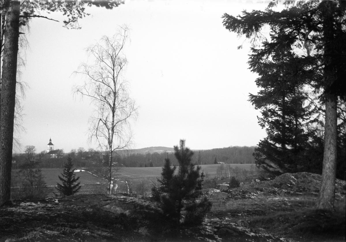 Mellan träden skymtar plöjda åkrar och i bakgrunden en vitkalkad kyrka.