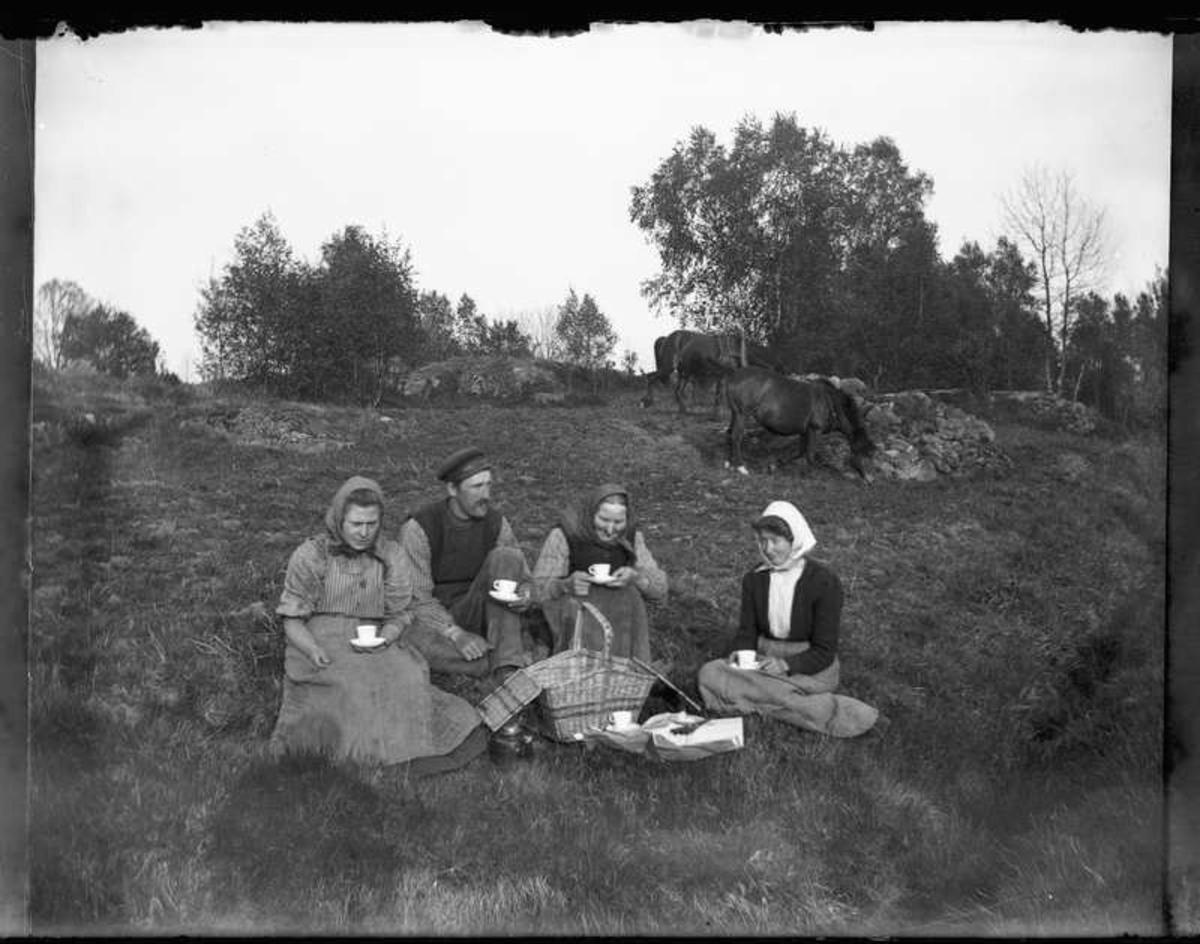 Kaffepaus vid potatisläggning på Arnstorp maj 1914. Beda Jonsson född Björn, Bäve 1892-12-20, Abraham Jonsson, Hj 1875-01-13, Britta Berntsdotter, Hjärtum 1843-07-12, och Olga Jonsson, född Olsson, Forsh 1891-05-12 sitter med kaffepanna, kaffekoppar och kaffekorg i gröngräset och i bakgrunden betar hästarna.