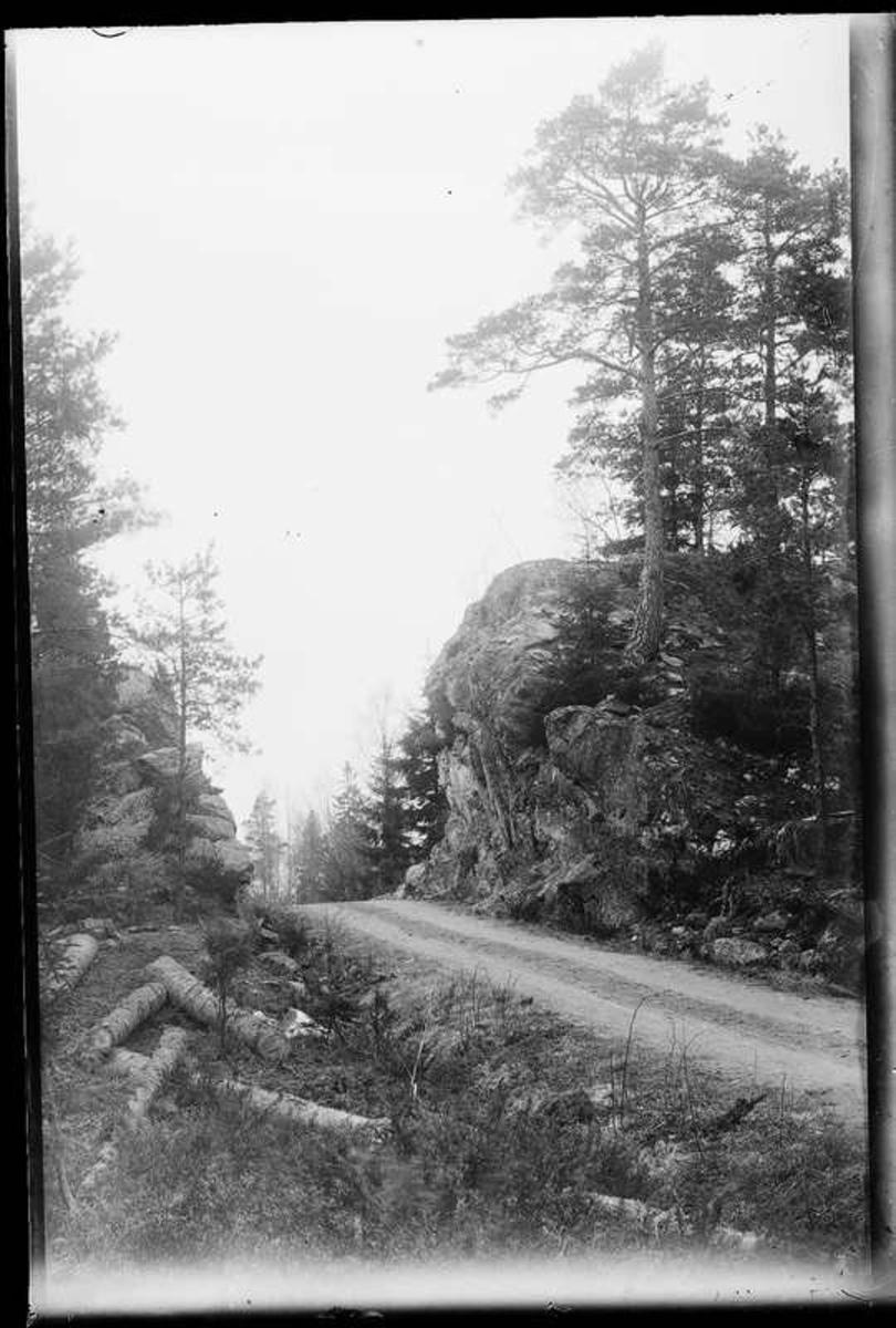 Den nya vägen mellan Sågbron och Nötbron, Fjällvägen, bilden tagen vid Räveberget. Vägen byggdes 3,5 m bred i början av 1920-talet.