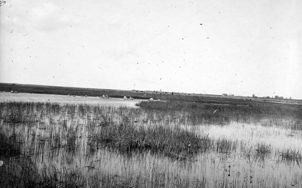 Podiceps auritus, örondopping,      Lofta, Öland 6 juni 1908.                Biotop för örondopping                          X=boplats
