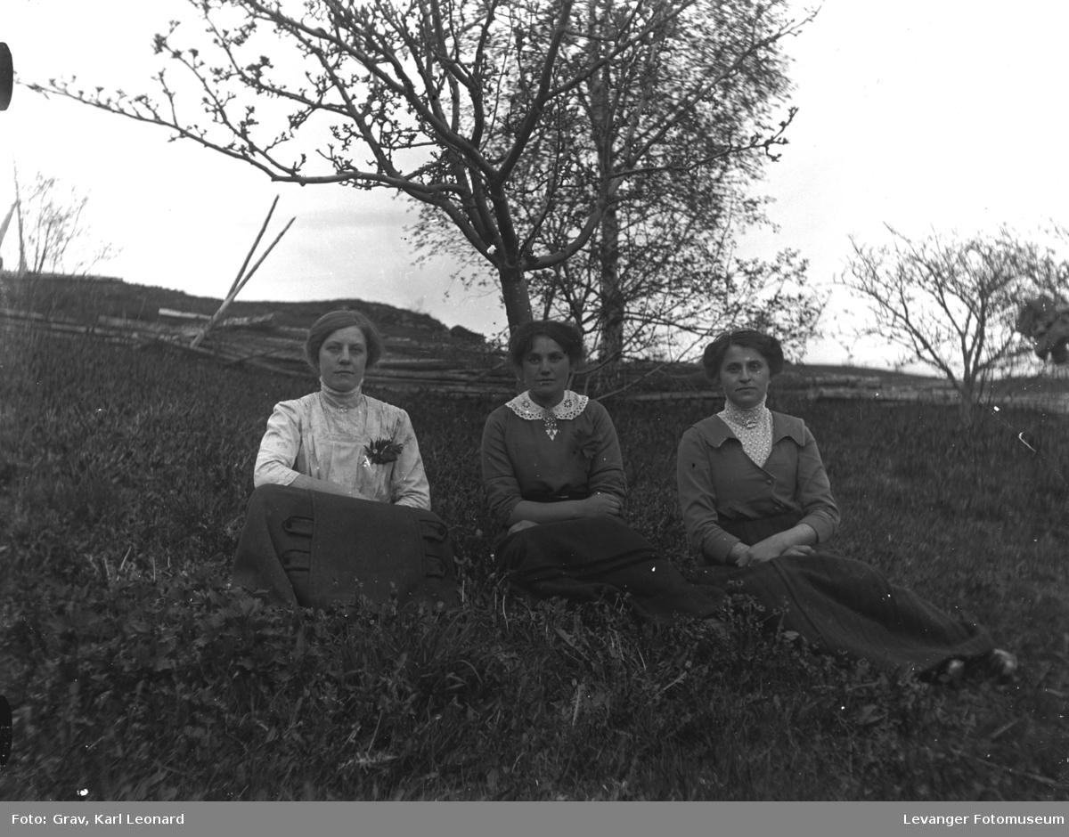 Gruppe, tre kvinner sitter på marka