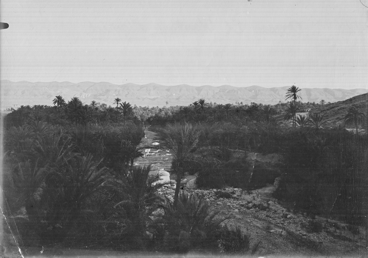 Oasen El katara, Algeriet, April 1910