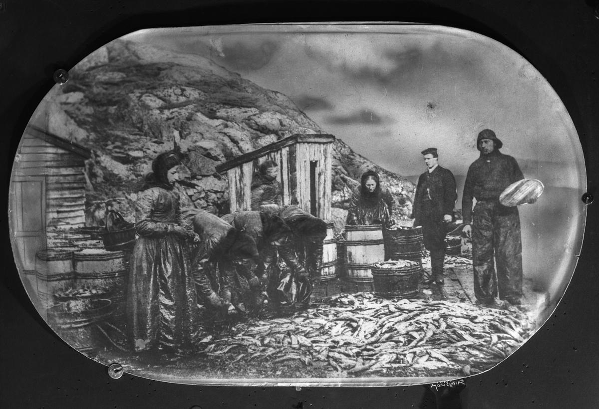 Sildearbeidere på kai. Både kvinner og menn. Sild, tønner og sjøhus forgrunnen.  Mindre trebgygning midt på bildet.  Fjell i bakgrunnen.