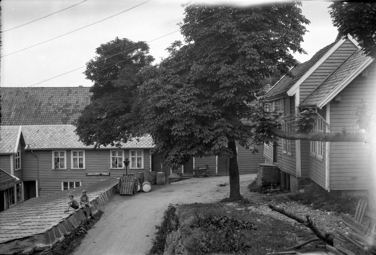 """""""Langaarde Tobak"""" bak Eidebryggen. To gutter sitter på et tak til en bygning (kun taket synlig). Tre og vei midt på bilde. Trehus til venstre."""