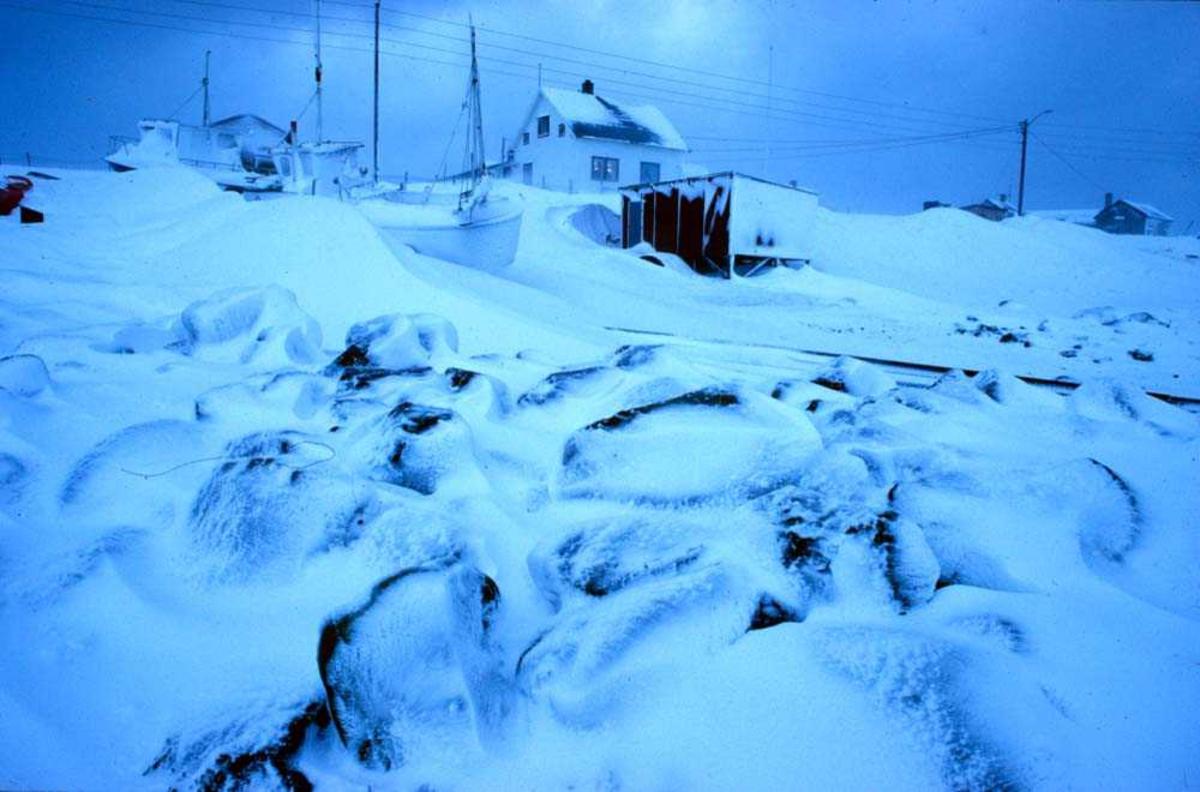 Landskap. Vinter. Hus og båter i vinterdvale for frost og sne.  Ett sted i Nord-Norge.