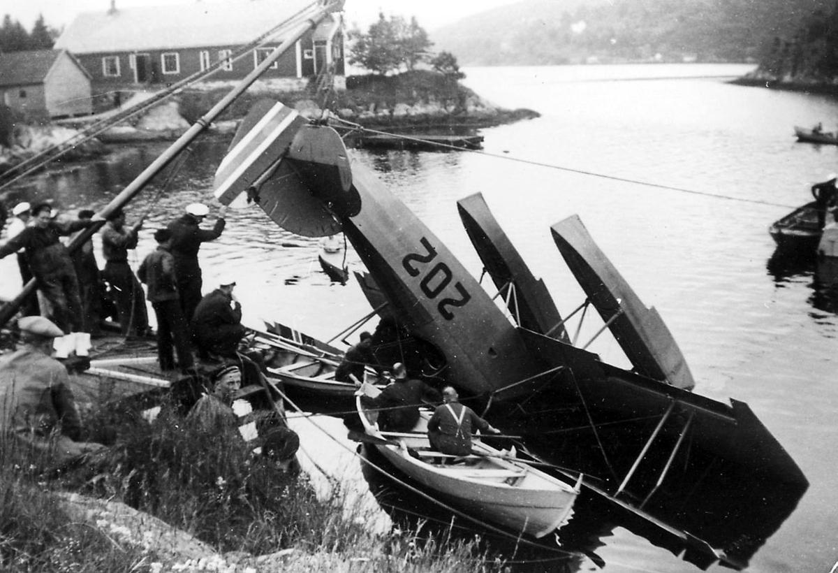 Havneområde. 1 fly, M.F. 10 T.2, henger etter halepartiet i en heisekran, noe av forpartiet nede i vannet. Flere personer på land og i småbåter rundt.
