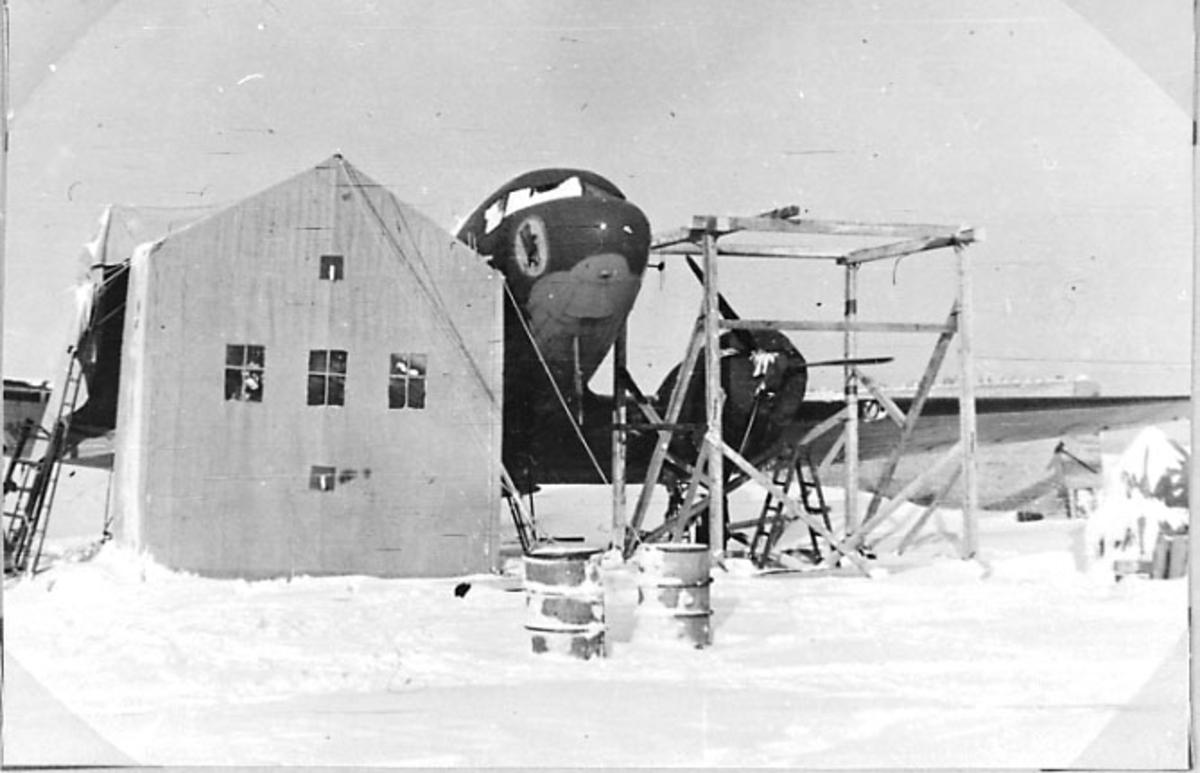 1 fly på bakken, C47, midlertidig bygning bygget over den ene vingen - motoren. 1 person på vei inn i bygningen. Tatt utendørs. Snø på bakken.