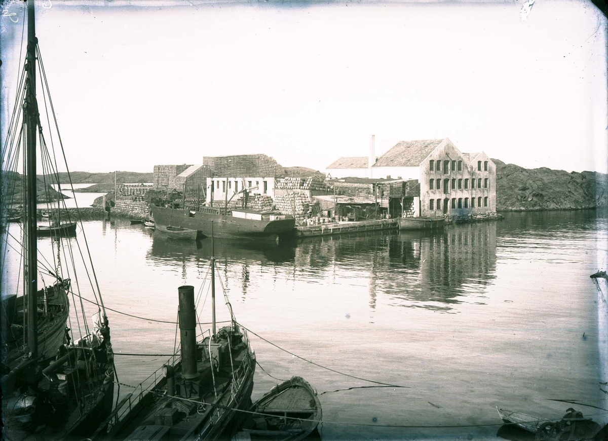 Havnebilde - Kaiområde - Fiskemottak