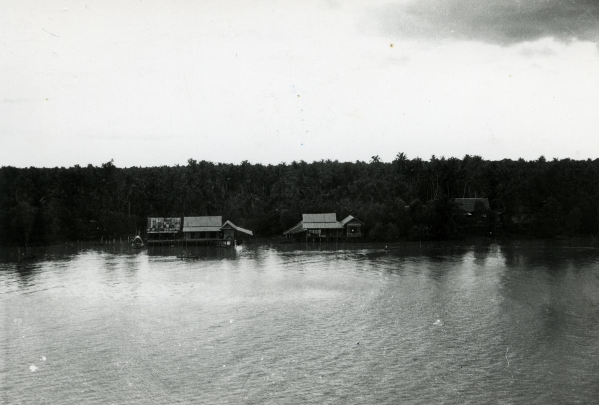 T/S 'Kingsville' (b.1956, Lithgows Ltd., Port Glasgo) på Filippinene.
