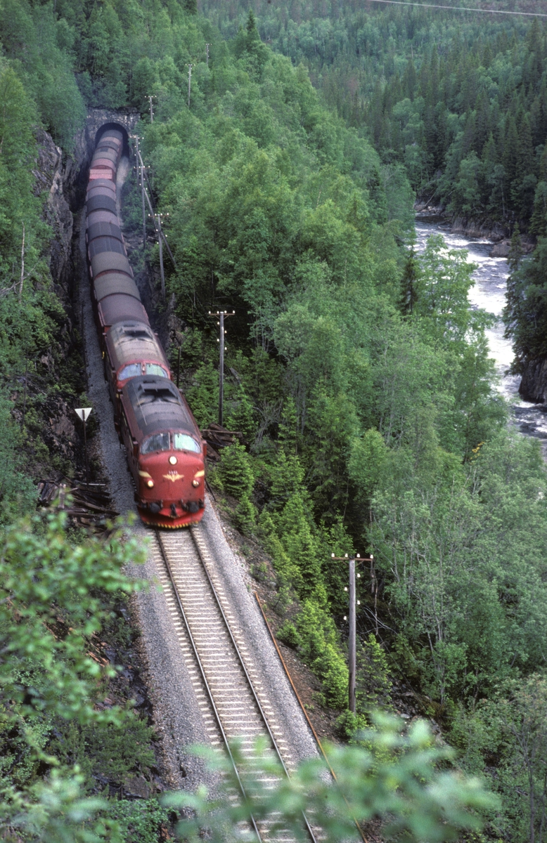 NSB godstog 5794 (Bodø - Trondheim) på vei oppover mot Lurudal mellom Formofoss og Agle. Bildet er tatt fra anleggsveien.