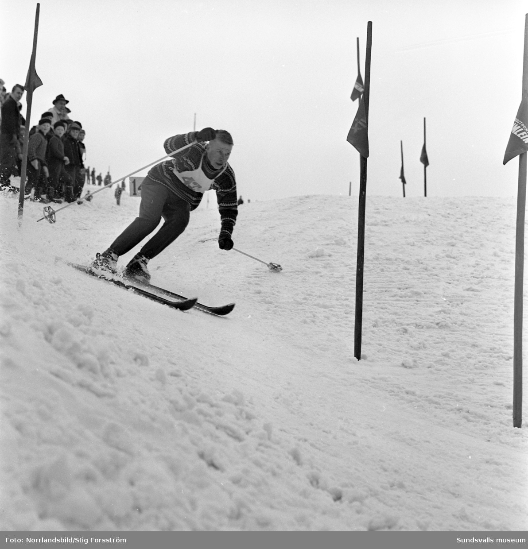 Slalomtävling på Södra berget med norska gutter som gör volter.