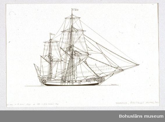 Montering/ram: Passepartout av tunn grå kartong; 55 x 66 cm, Svensk hukare från 1760-talet. Övrig historik se UM72.26.001. ::