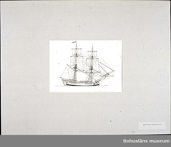 Montering/ram: Passepartout av tunn grå kartong; 55 x 66 cm, Snaubriggen Gustaf Adolph, byggd 1783 i Kalmar. Övrig historik se UM72.26.001.
