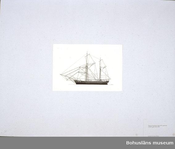 Montering/ram: Passepartout av tunn grå kartong; 55 x 66 cm, Galeasen Experiment, byggd 1857, typisk östersjöseglare under förra seklet. Övrig historik se UM72.26.001.