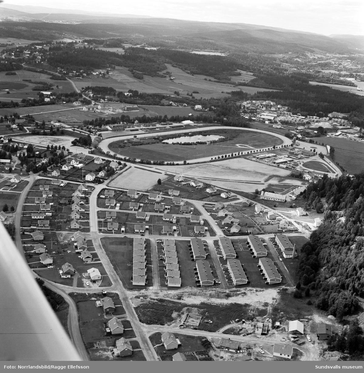 Flygfoto över Bergsåkers travbana och villaområdet öster om banan.