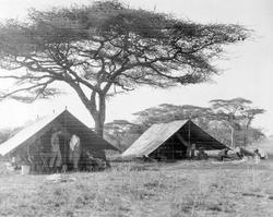 Teltleir. Europeere på jakt- og fotosafari i Tanganyika Terr