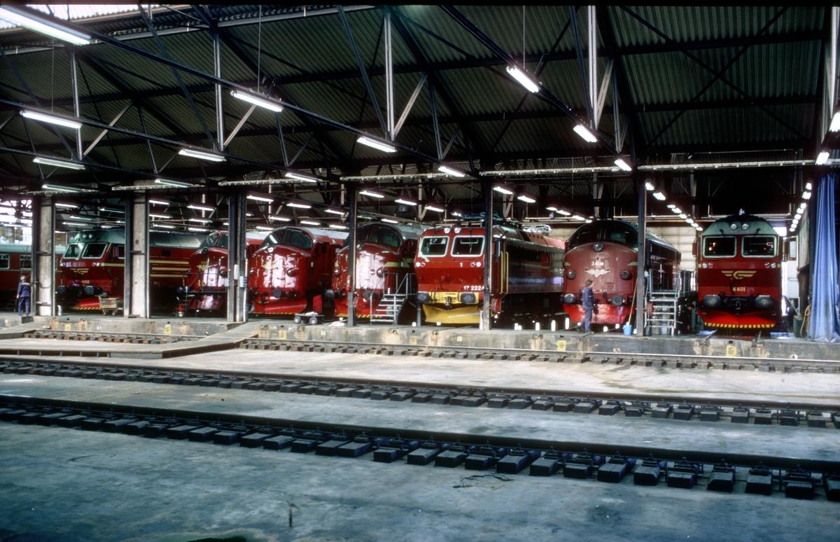 Interiør i NSB lokomotivstall på Marienborg i Trondheim. I forgrunnen banen til traversen, som er en skyvebro for å flytte lokomotiver fra et spor til et annet. Lokomotiver av typene Di 4, Di 3 og El 17.