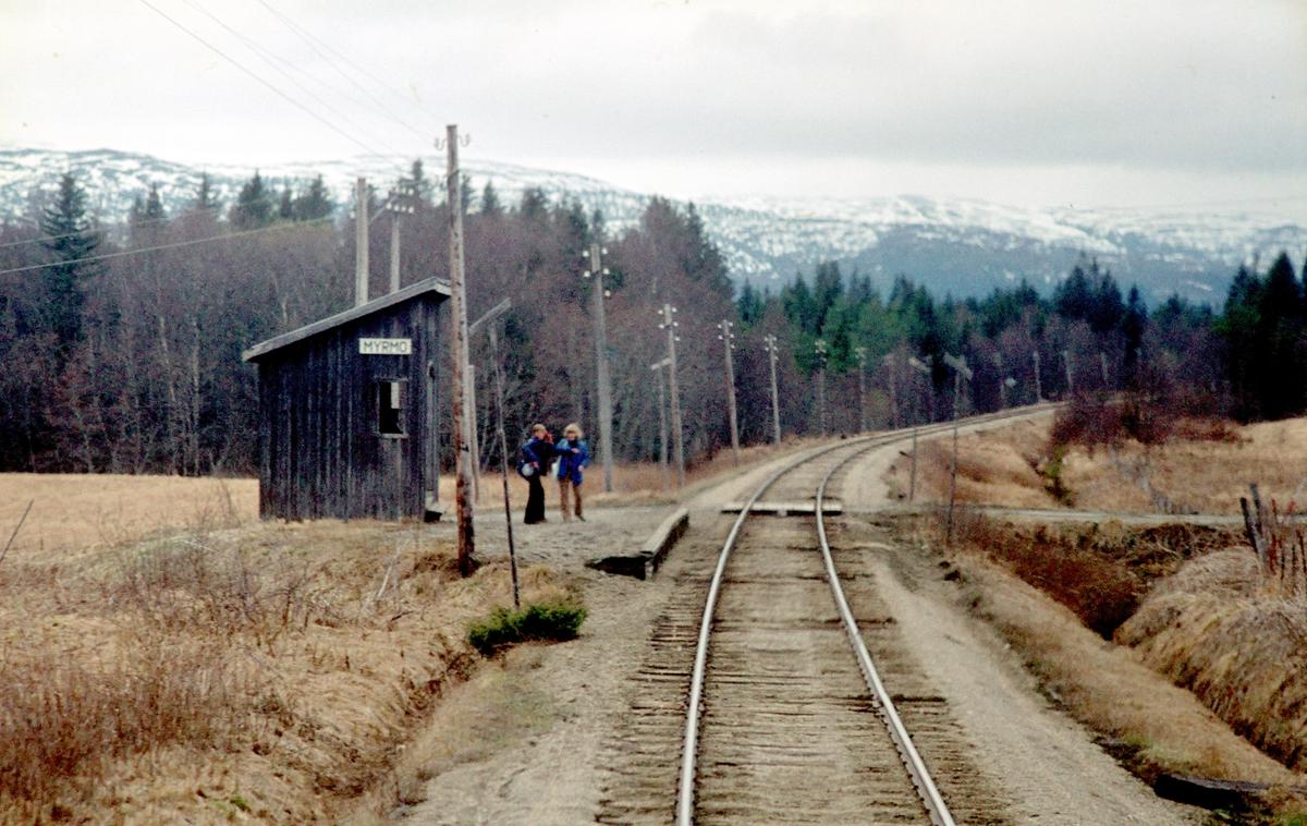 Myrmo holdeplass på Namsoslinjen. Sett fra tog 483 (Grong - Namsos). Namsoslinja.