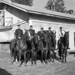 Bilder på Sundsvalls ridande polis och polishästarna, nummer