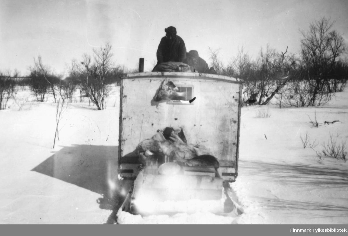 Beltevogn på Finnmarksvidda. Vi ser en beltevogns bakre del som ser ut som et lite hvit brakkebygg eller en stor kasse med et vindu. Oppå kjøretøyet ser vi to menn i skinnlue. I området rundt ser vi snø og trær. Ca.1945-50.