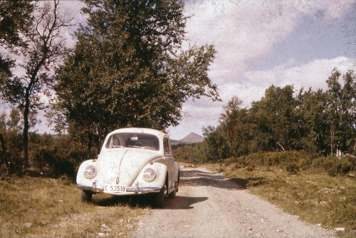 Fra en biltur i Vangrøftdalen til Såttåhaugen. Dalsbygda, Os i Østerdalen. Forollhogna i bakgrunnen. Familiens VW 1200 1961-modell i forgrunnen.