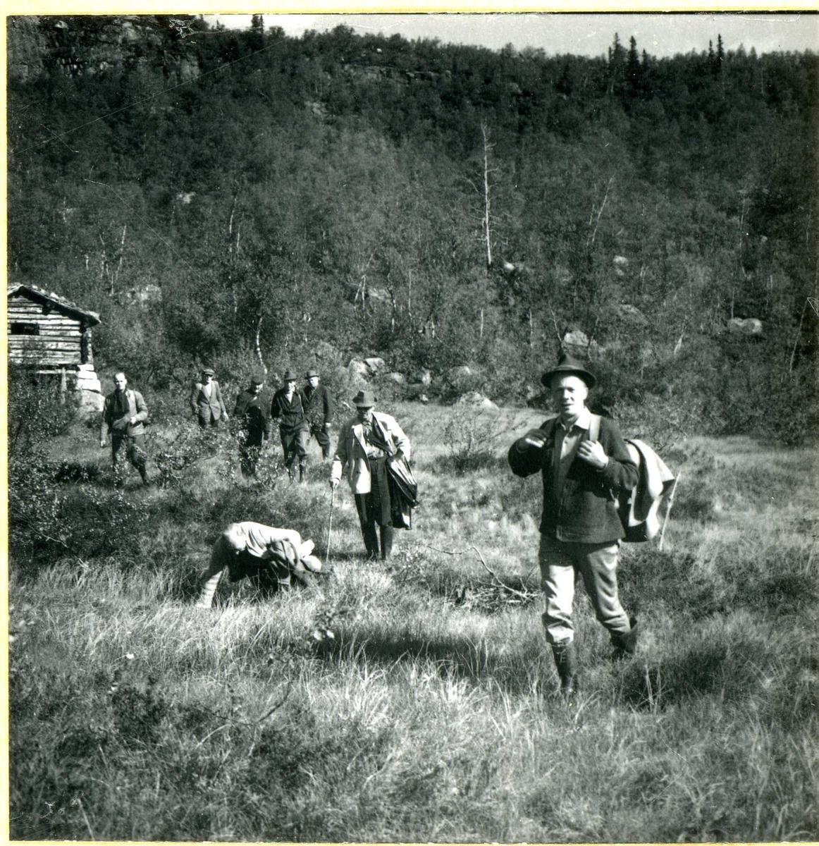 721-2 Skjønn på befaring ved Strandstøylsdalen