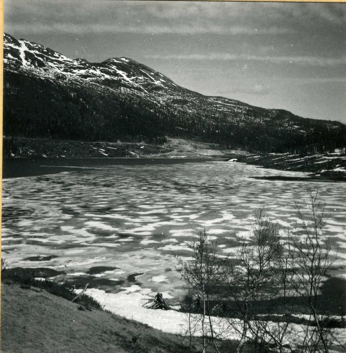 Botnedalen  401
