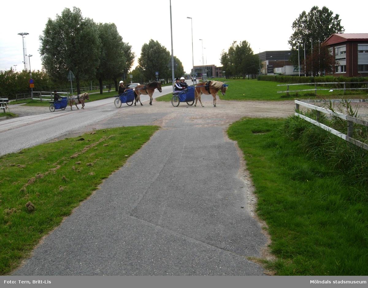 Åby Travskola och Omgivningar 2008.  Elever från Åby Travskola travtränar på slingan runt Åby 2008.