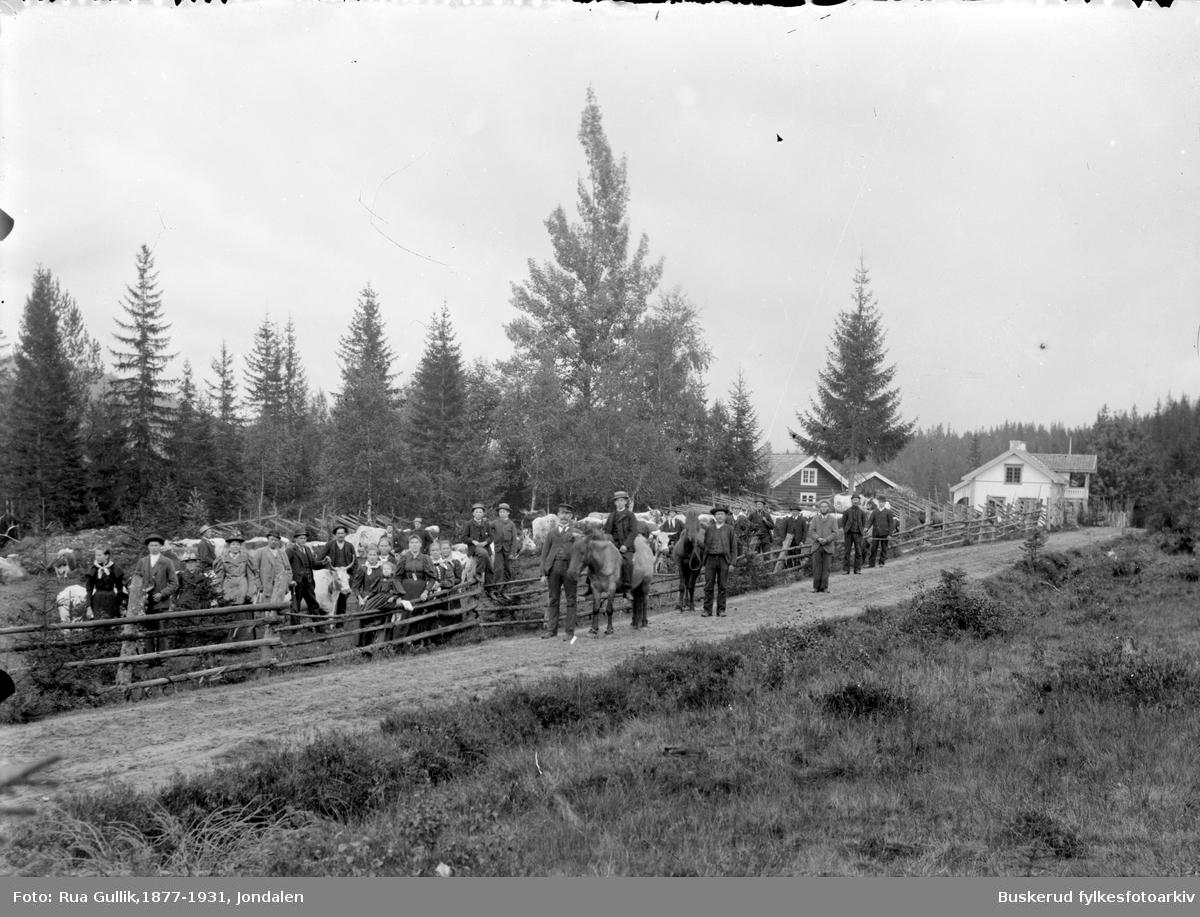 Bildet er tatt ved gården Vollan i øvre Jondalen  Foto ca. 1900 Stor gruppe mennesker med kyr og hester
