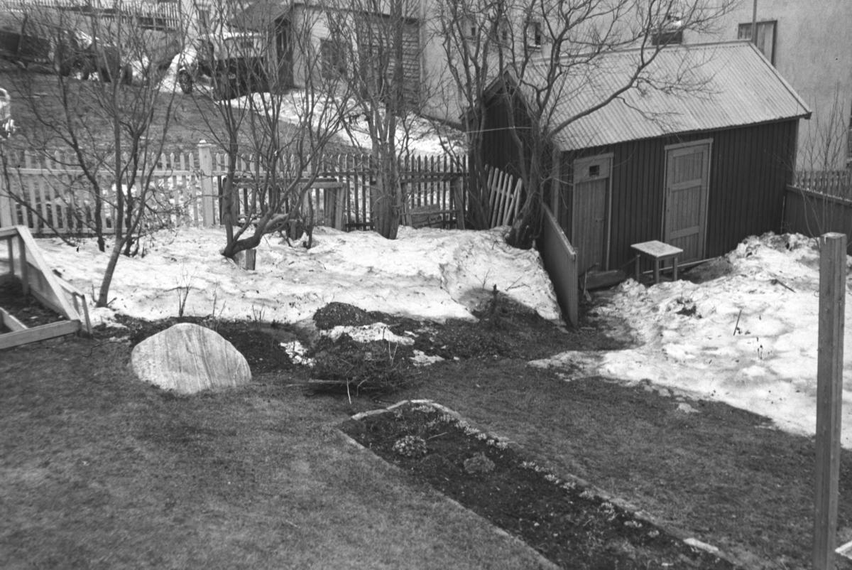 Hagen til Leif Hauge og familie i Nyborgveien i Vadsø.