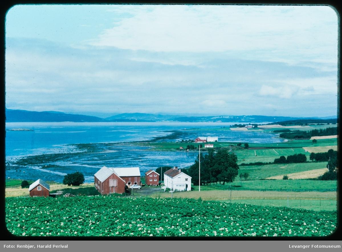 Mot Trondheimsfjorden ved Alstadhaug møt sør.