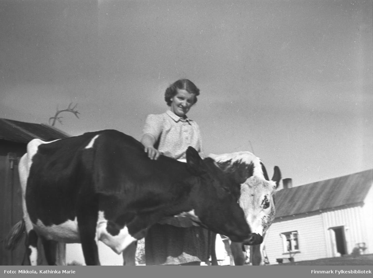 Astrid Mikkola med kyrne på gården Mikkelsnes. Bak henne et uthus pyntet med reinhorn, og den lyse fjøsdelen av hovedbygningen