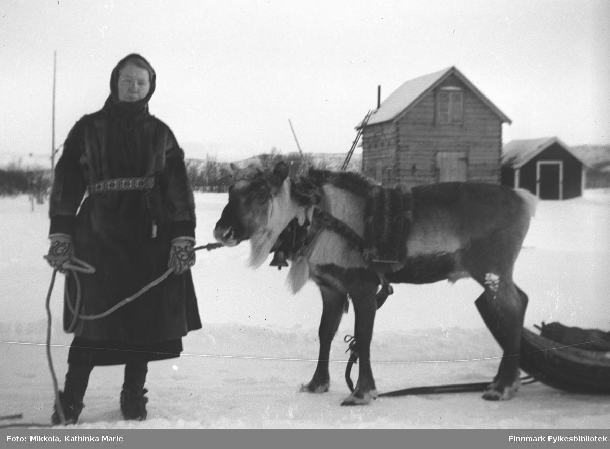 Synnøve Mikkola med kjørerein på tunet til Mikkelsnes, ca. 1935-1940