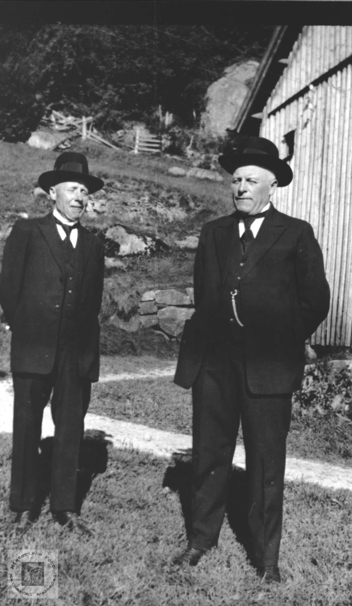 Tvillingene Torkild og Gunder Bjerland