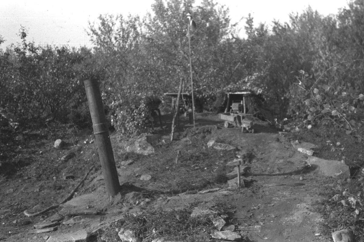 Et lekeprosjekt til Hauge-guttene i Andersbyskogen under krigen.