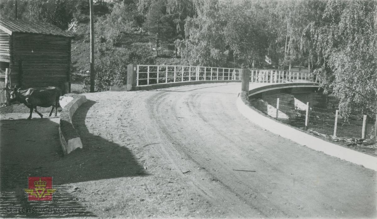 Album fra 1929-1943. Fotografert ved  Tessa bru 03.09. 1935. Tessa bru ligger på Ottadalsvegen i Vågå kommune.