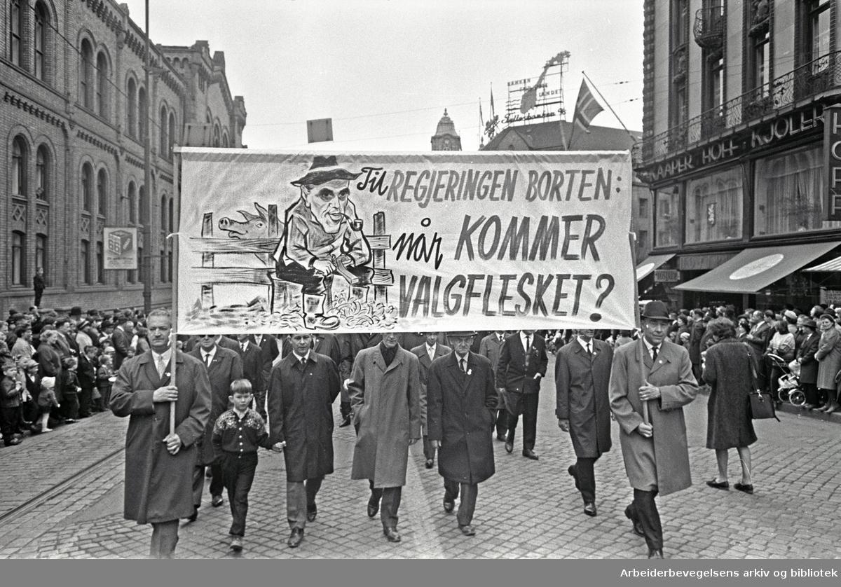 1. mai 1966 i Oslo.Demonstrasjonstoget i Karl Johansgate.Parole: Til regjeringen Borten:.Når kommer valgflesket?.Karikatur av statsminister Per Borten.