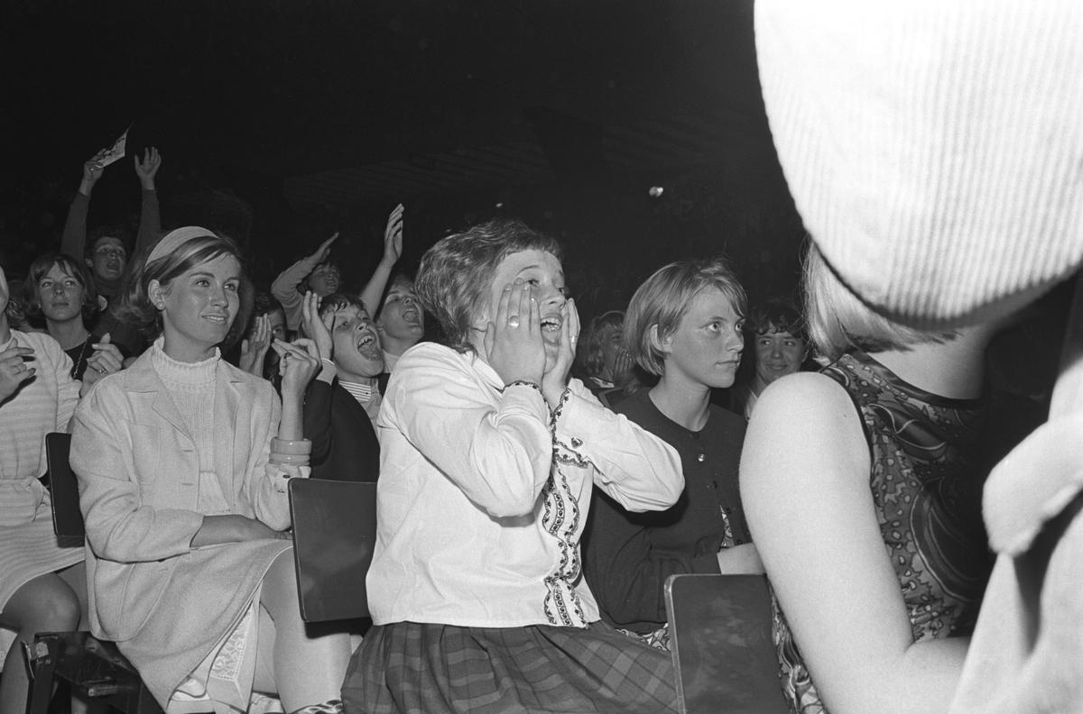 Konsert med det engelske bandet The Beatles i K.B. Hallen i København. Publikum lar seg rive med av musikken.