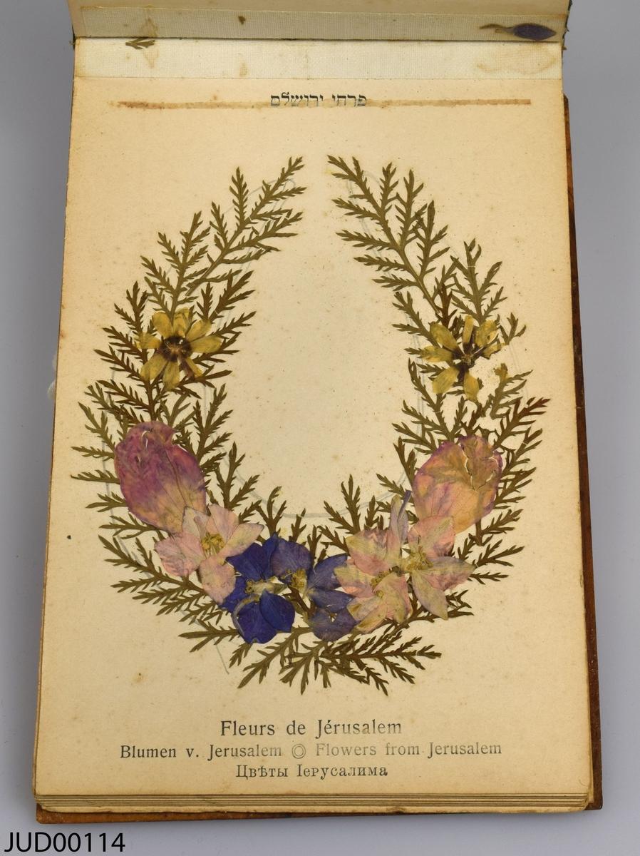 """Bok med träpärmar, skriven på ryska, hebreiska, tyska, franska och engelska, med namnet """"Blumen des Heiligen Lande / Flowers of the holy land / Fleurs de la terre sainte"""". Boken innehåller pressade blommor från Jerusalem."""