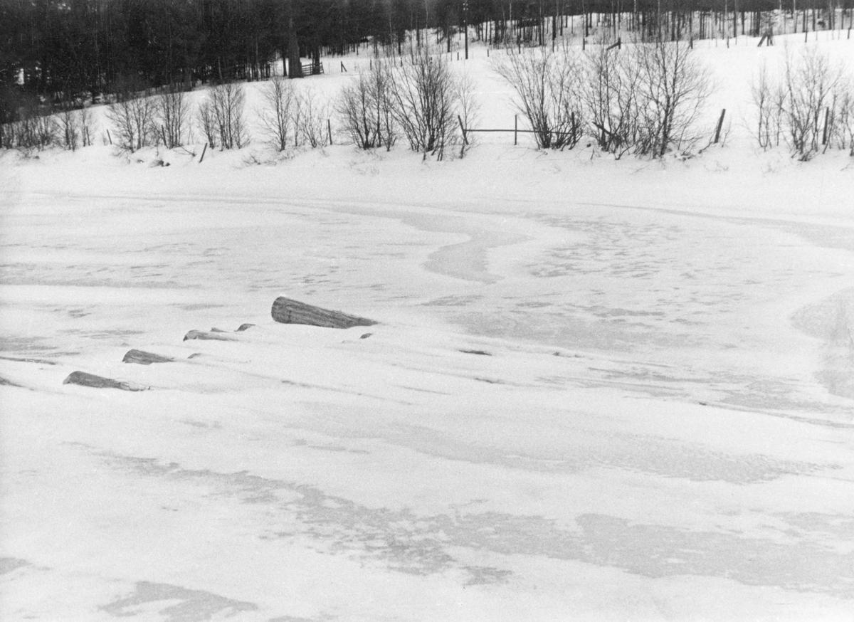 Nedsnødd og innfrosset tømmer på elveisen i Glomma ved Øyan på Tynset.  Fotografiet er antakelig tatt for å dokumentere hvordan virke som kjøres fram og legges på isen fryser inn og blir mettet av fuktighet i vintersesongen, noe som økte faren for at stokkene skulle synke under fløtinga kommende vår og sommer.  Virket skal ha tilhørt Bull Aakrann.
