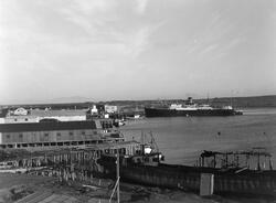 Vadsø havn. Hurtigruta ankret opp ved dampskipskaia. Vadsøya