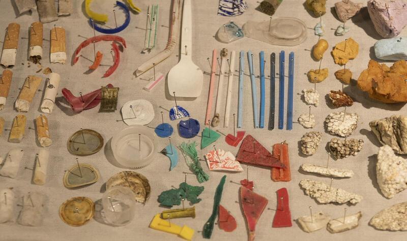 plastmangfold (Foto/Photo)