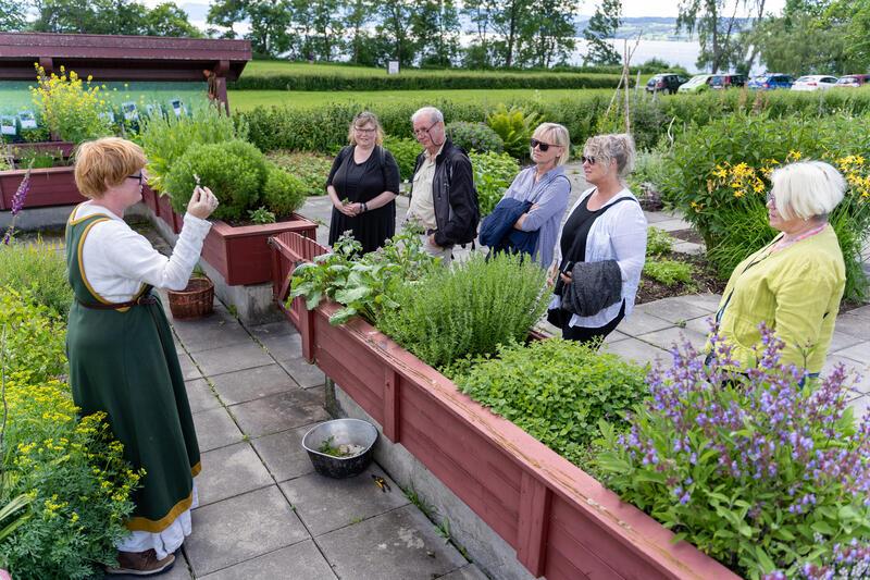 Sansehagen som omkranser giftplanteavdelingen i Urtehagen på Domkirkeodden, er malt med linoljemaling. (Foto/Photo)