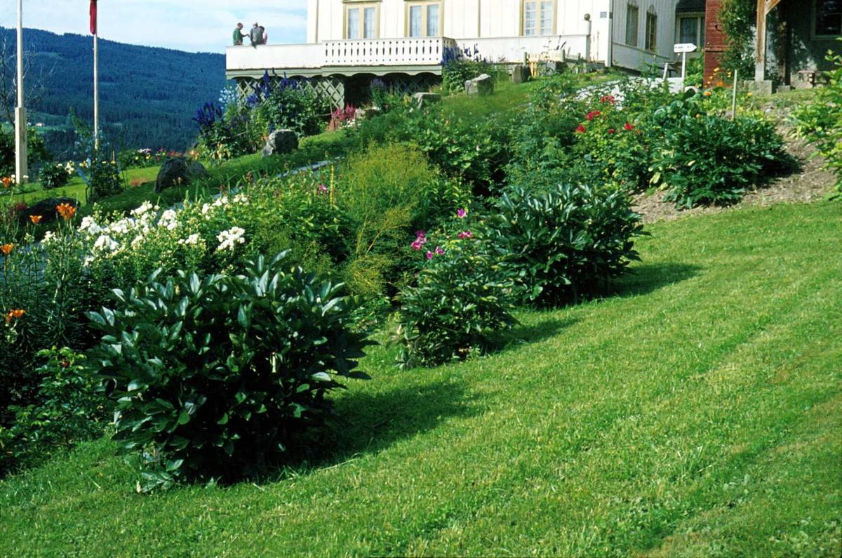 DOK:1972, Aulestad, hage, veranda, blomster,