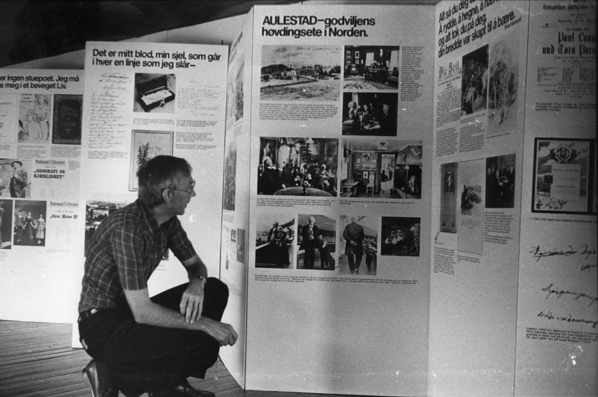 DOK:1982, Aulestad, utstilling, jubileum,