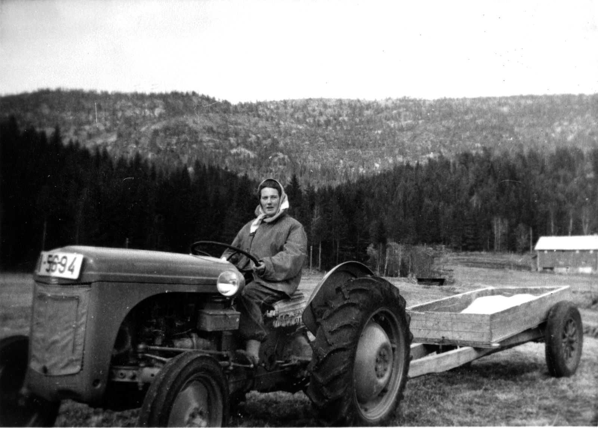 Åmlibilder samlet av Åmli historielag Tone Smeland på første landbrukstraktor