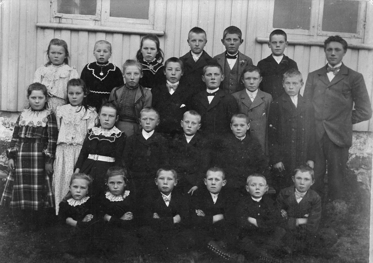 Skolegruppe