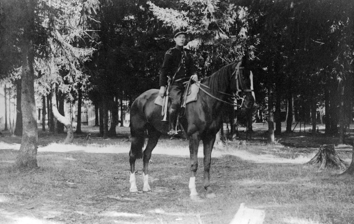 Militær til hest
